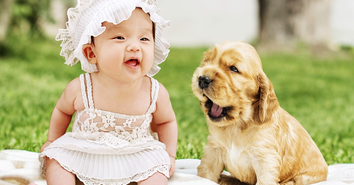 truffinade bébé2 - Les bons gestes avec son chien pendant et après la grossesse !