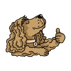 Chien FIER 300x300 - Balader un chien sourd en libre…vous pensez que ce n'est pas possible ?…et bien si !!!
