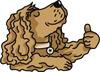 puce chien OK - Coach en éducation canine positive et comportement canin