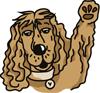 puce chien salut 100x93 - Coach en éducation canine positive et comportement canin