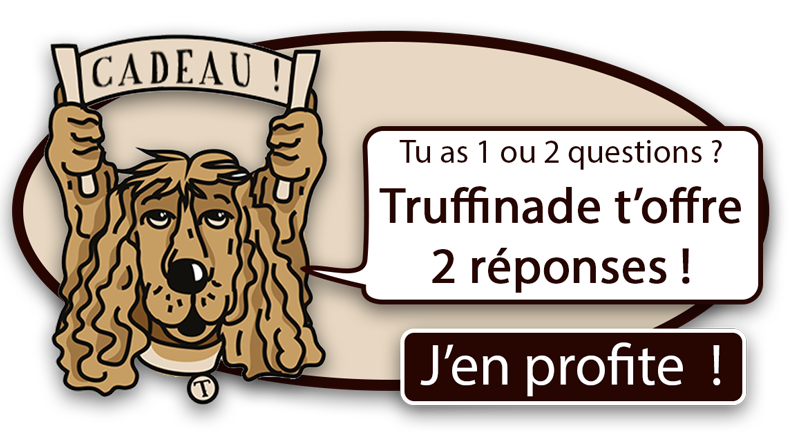 2 QUESTIONS 2 REPONSES 800 V3 - Coach en éducation canine positive et comportement canin